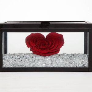 Γυάλινο κουτί με τριαντάφυλλο που διαρκεί για πάντα