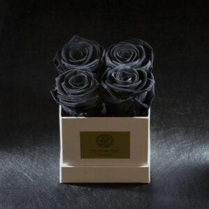 FOREVER ROSA BLACK