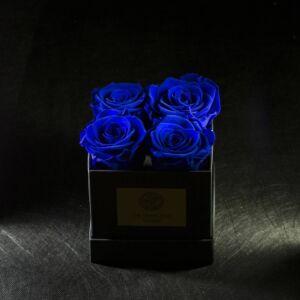 FOREVER ROSA BLUE