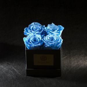 FOREVER ROSA LIGHT BLUE