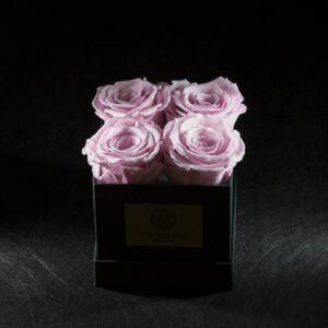 FOREVER ROSA PINK
