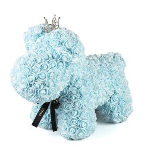BABY BLUE PUPPY